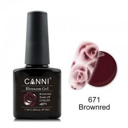 Canni Blossom Gel 671